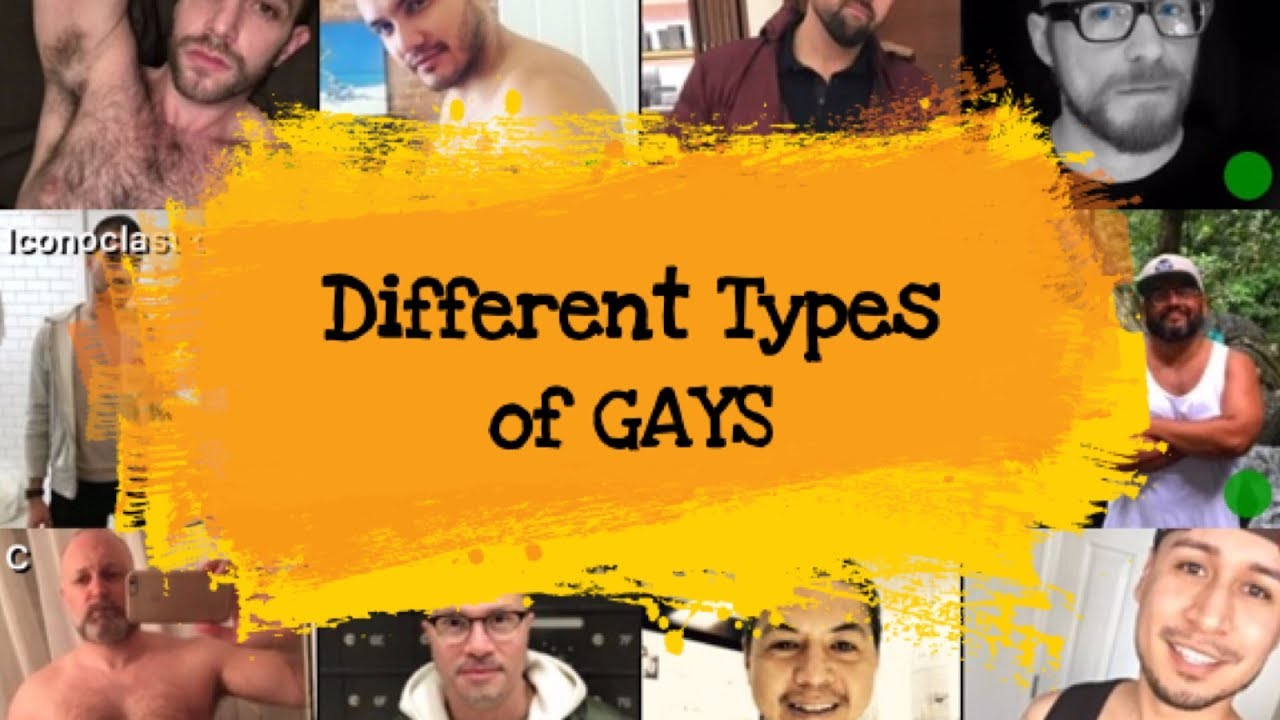 animal gay types