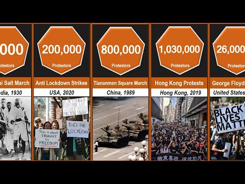Biggest Protests Comparison