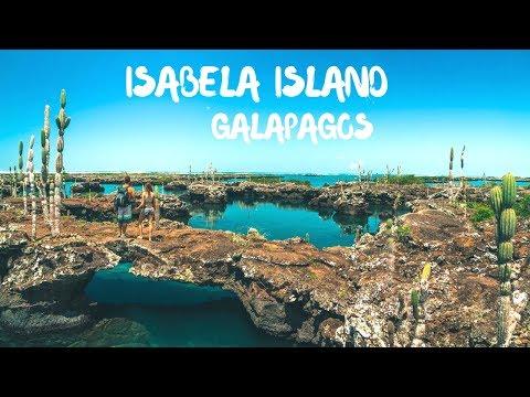 Visiting Isabela Island, Galapagos Islands, Ecuador