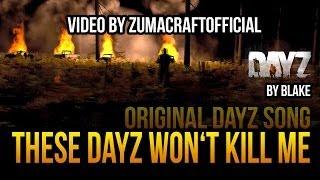 blAke - These DayZ won