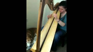 Harp - 'My Lagan Love' - Jessica Wright Harpist