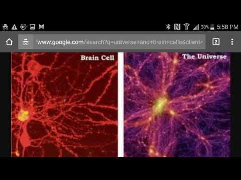 Mandela Effect Thoughts (Universe A Brain Cell In The Mind Of God?) (Part 2)