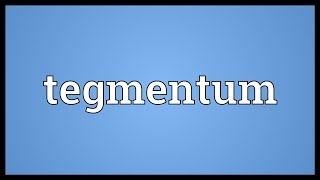 Tegmentum Meaning