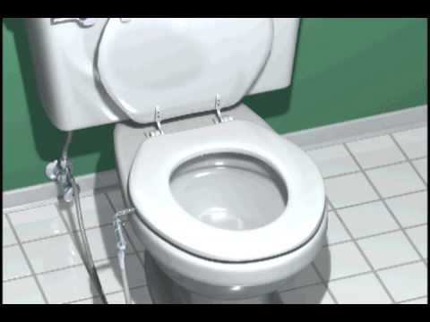 Video animation USABIDET H-1 bidet toilet seat features with our attachable  bidet