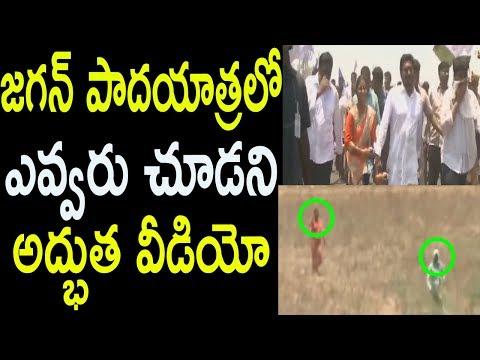 YS Jagan Padayatra Highlights Crazy Fans Krishna District Ladies Farmers Followers | Cinema Politics