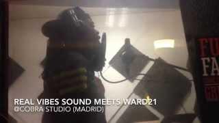 Ward 21 Gully Gun - REAL VIBES DUB