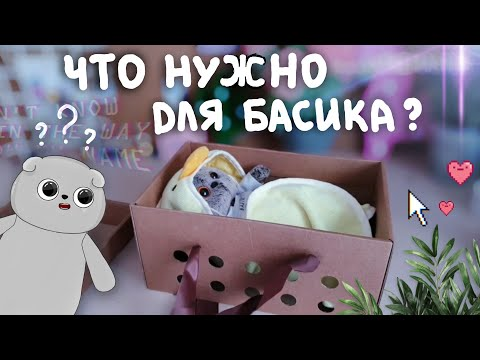 Что нужно для появления Басика в вашем доме|Basik TV