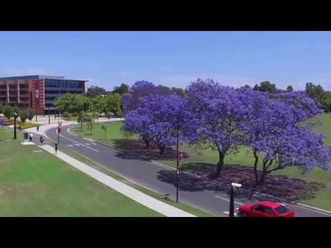 WSU Parramatta Campus Flight,  DJI Phantom 3 Standard
