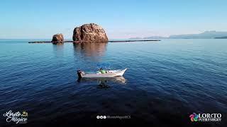 Temporada de ballenas en Loreto