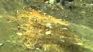Парень из-за ям оторвал бампер на машине(Видео со Степановки. Парень из за ям оторвал бампер на машине. Опубликовано 3 мая, 2013 - 15:18 пользователем Поли..., 2013-05-03T08:01:07.000Z)