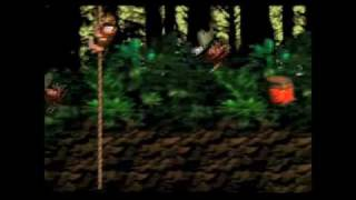 Donkey Kong Country - Part 4: The Hamster Wheel of DOOM