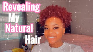 I MADE IT TO 700 SUBSCRIBERS🥳//NATURAL HAIR REVEAL