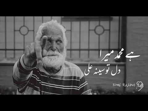 janam-fida-e-haideri-whatsapp-status