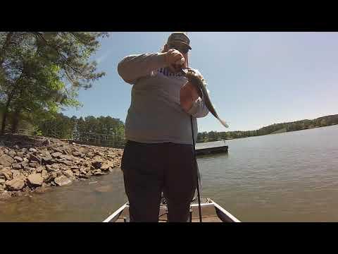 Fishing Lake Allatoona