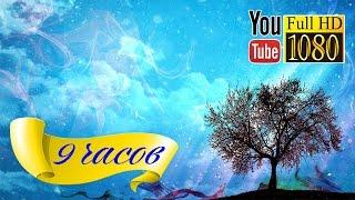 HD Музыка 🎵 Лаунж 🎵 Музыка для Обучения 🎵 Звуки Природы - Звуки Леса 🎵 Пение птиц 🎵 Природа лес