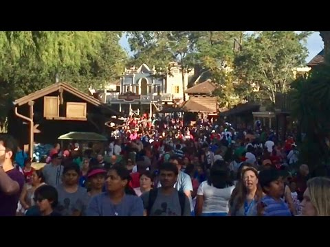 TDW 1639 - How Busy Is Disney World Christmas Day ?