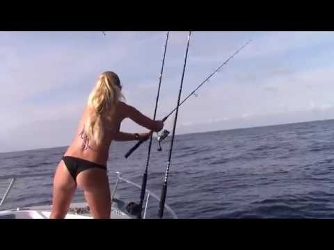 Florida Mahi, Tripletail & HOW TO Catch Bait GoPro Video