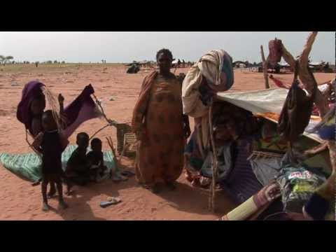 Mauritania: Growing Numbers