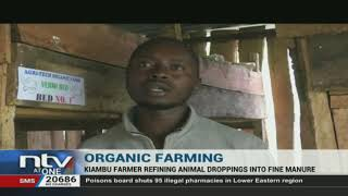 Kiambu farmer refining animal droppings into fine manure