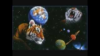 Jon and Phe Destroy the Universe - Tigers in Space mix FREE DL