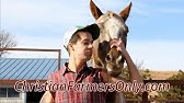 farmers only creator