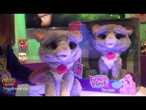 Интерактивный котенок Бутси (Bootsie) FurReal Friends от Hasbro