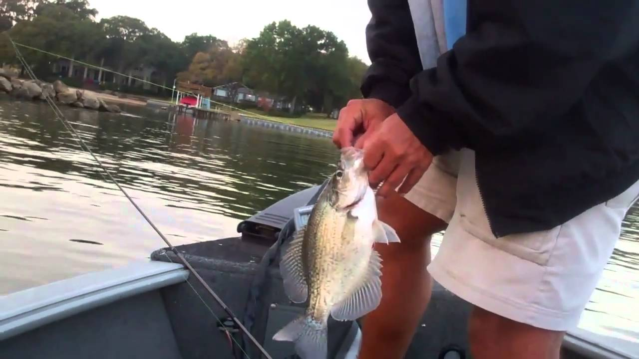 Cedar creek lake with big youtube for Kentucky lake crappie fishing report