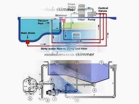 ประเภทสระว่ายน้ำ สระน้ำล้น Overflow สระสกิมเมอร์ Skimmer  By winwin pool