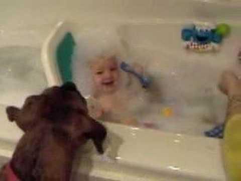 Dog Eats Bubble Bath