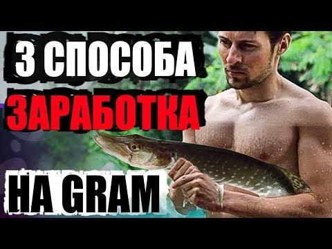 3 способа заработать на Telegram Open Network (GRAM) Павла Дурова криптовалюта заработок