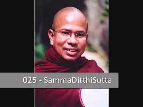 025 Samma Ditthi Sutta - සම්මාදිට්ඨි සූත්රය - by Ven Kiribathgoda Gnanananda  Thero