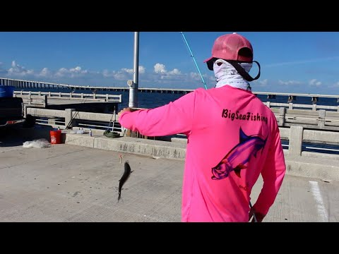 Fishing skyway pier florida youtube for Tides 4 fishing skyway