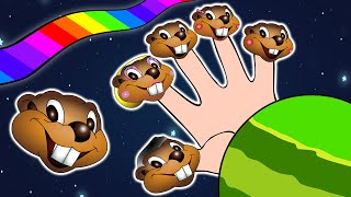 Finger Family Beaver Puppets  | Fun Educational Song, Preschoolers, Beavers In Space, Easy English