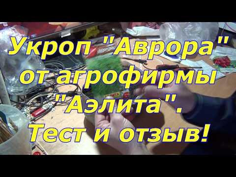 """Укроп """"Аврора"""" от агрофирмы """"Аэлита"""". Тест."""