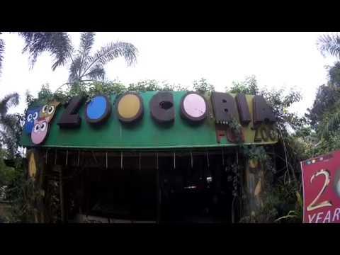 Zoocobia Fun Zoo Clark Pampanga