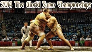 19-ый Чемпионат Мира по Сумо