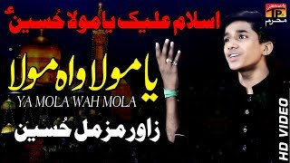 Ya Mola || Zawar Muzamil Hussain || New Noha 2018 || TP Moharram
