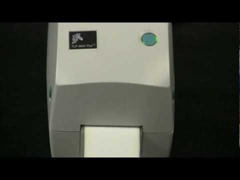 Zebra TLP 2824 Plus Printer Setup