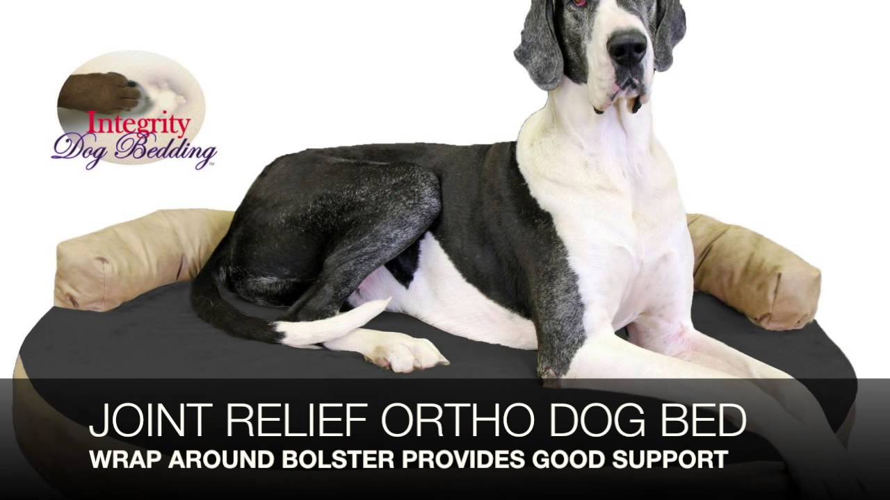 best great dane dog beds review - youtube