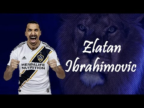 Zlatan Ibrahimovic The Lion Feat The Zlatan Song Download