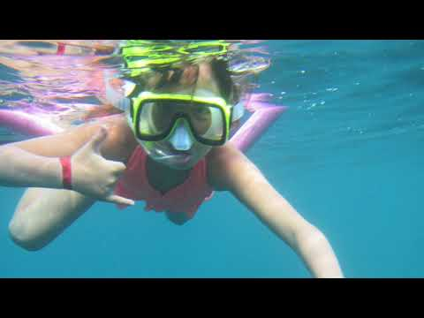 Best Lanai Snorkeling Adventure from Maui | Hawaii Ocean Project