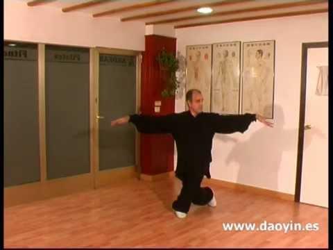 Daoyin Shi Er Fa (12 Técnicas de Daoyin del profesor Zhang Guangde)