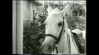 the white horses theme tune - soprano uke