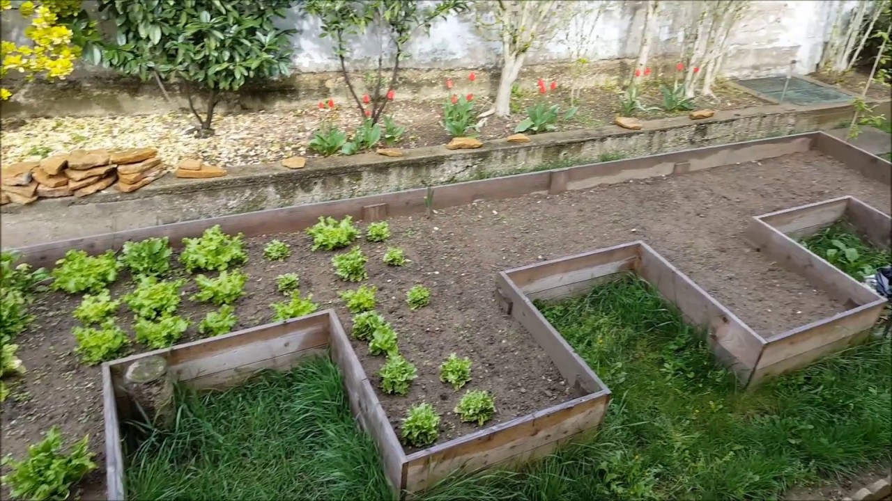 ajout de terre dans carr potager d placement de salades travaux permaculture youtube. Black Bedroom Furniture Sets. Home Design Ideas