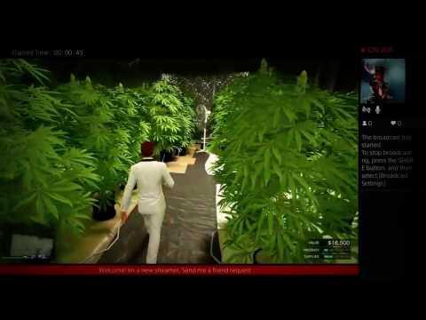 Motorcycle Gang GTA Update - Weed Farm