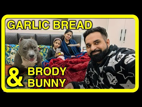 Brody and Bunny Playing and Our Garlic Bread recipe Funny Dogs and Family Vlog Harpreet SDC