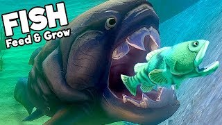 Feed and Grow Fish Gameplay German - Monster Fisch Modus