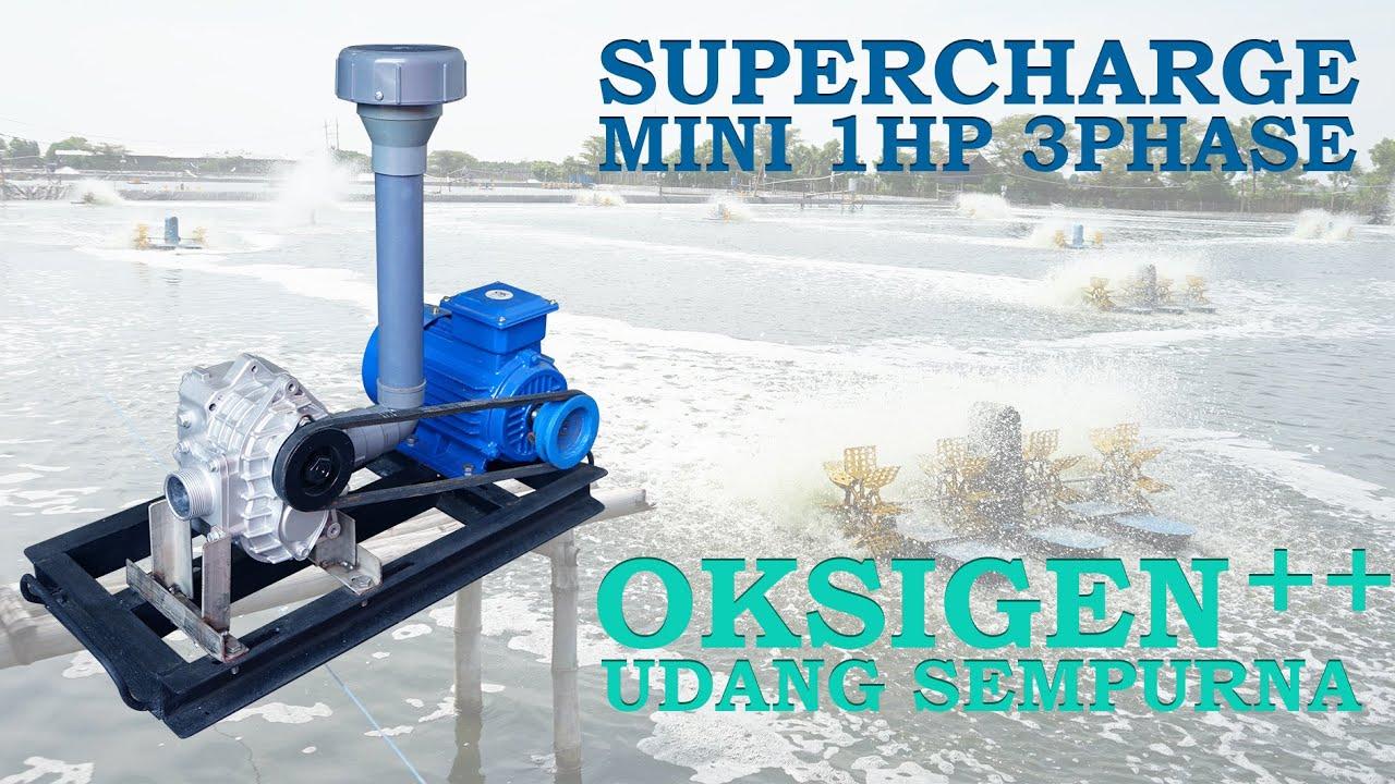Supercharge untuk menambah oksigen pada kolam budidaya ...