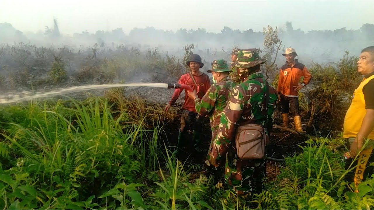 UNICEF: Karhutla Indonesia Lepaskan 360 Megaton Karbon, Bahayakan 10 Juta Anak-anak