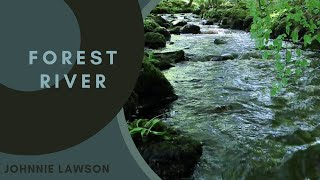 8 Hours Relaxing Naтure Sounds Forest River-Sleep Relaxation-Birdsong-Sound of Water-Johnnie Lawson